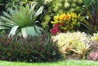 Acacia Hills Beach and coastal landscaping 8